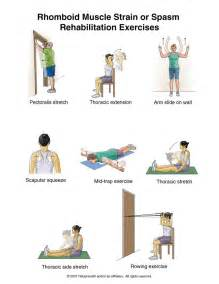back spasms muscle group picture 7