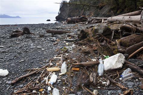 ocean debris picture 14