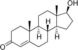 synthetic testosterone picture 2