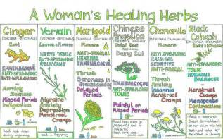 herbal healing remedies picture 2