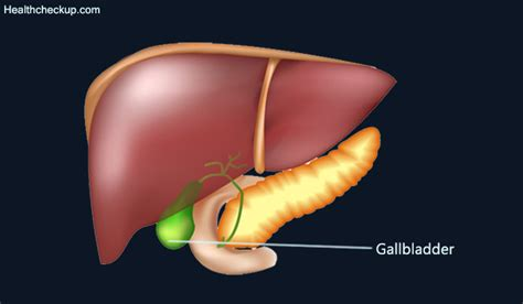 gall bladder shortness of breath picture 15