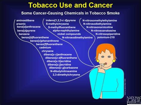 cigar smoke cause cancer lower count picture 7