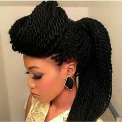 braids and twist hair styles picture 6