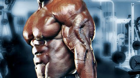 testosterone nation triceps picture 10