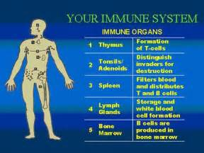 reasons for suppressed immune systom picture 6