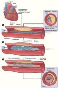 collagen adalah picture 2