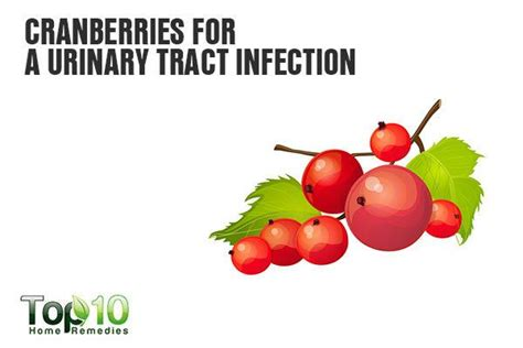 cranberries and bladder infections picture 3