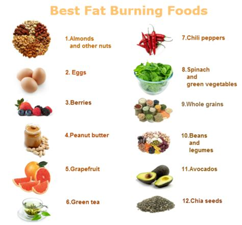 food and fat burning picture 5