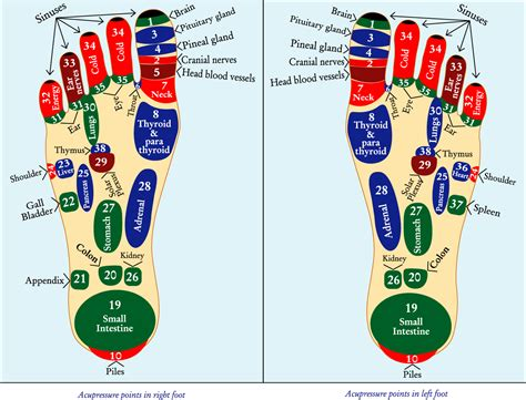 acupressure weight loss picture 6