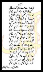 sexy anti satori urdu 2013 picture 17