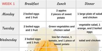 healthy fast weight loss diet picture 5