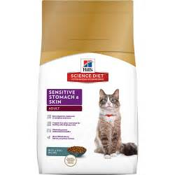 cat health dry skin picture 13