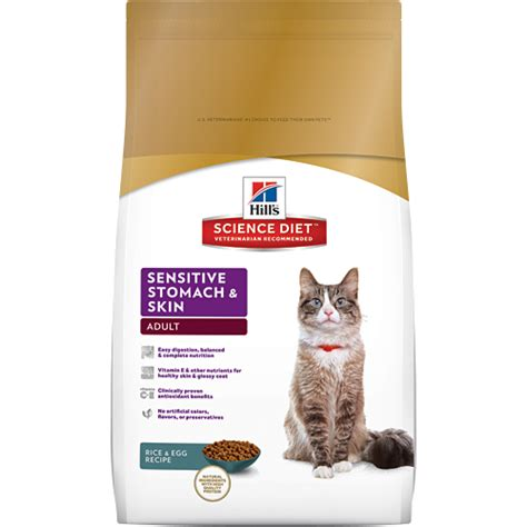 cat health dry skin picture 2