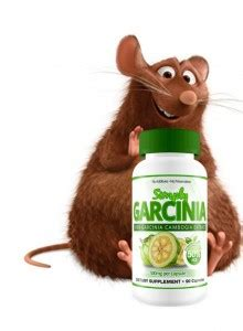 garcinia cambogia benefits for sale picture 2
