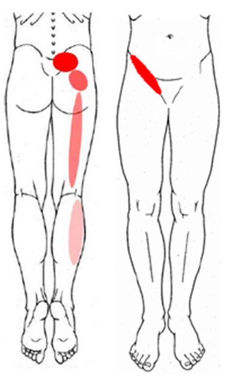 sacroiliac joint pressure points chart picture 10