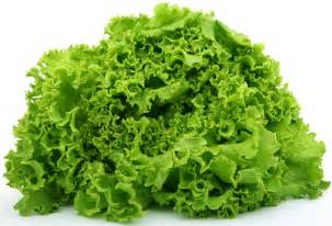 is green leafy lettuce good for people with picture 2