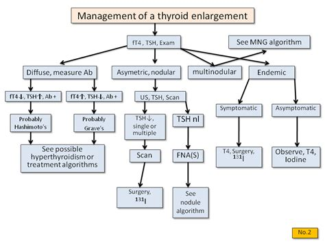 what is hypothyroidism picture 5