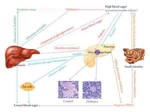 podiatrists toenail laser utah picture 1