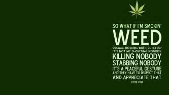 marijuana plant and how to smoke picture 5