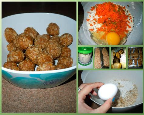 diabetic cat food recipe picture 11