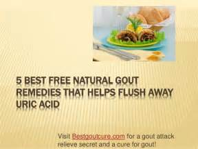 5 herbal remedies gout picture 2