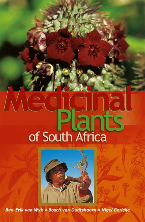 herbal plants anti bulate sa picture 11
