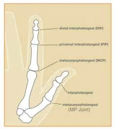 pip joint picture 7