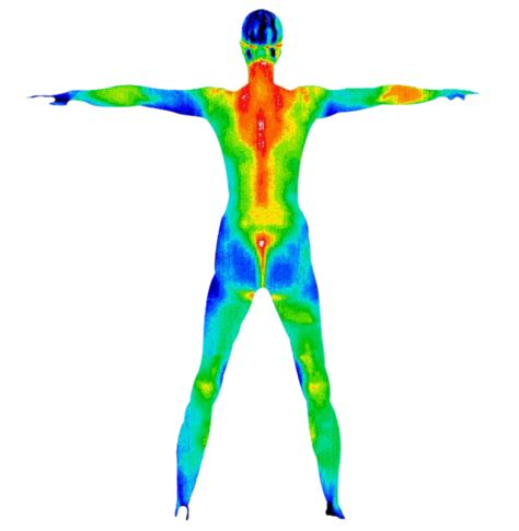 whole body research phone number picture 13