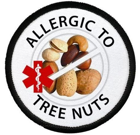 argan tree nut picture 6