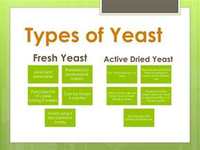 what is the clification of yeast picture 12