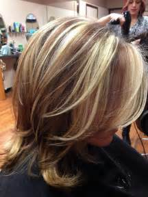 hair highlight example pictures picture 6