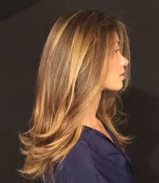 highlights for brown hair picture 2