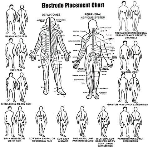 placement of tens electrodes for male sexual pleasure picture 2