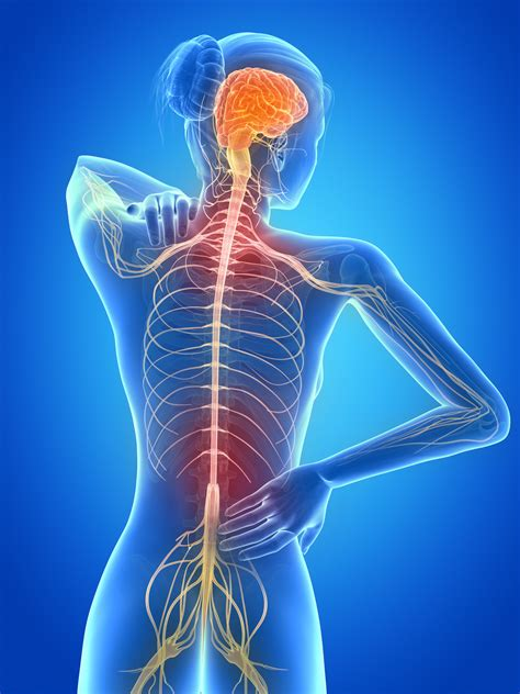 central nervous system injury skin rash picture 3