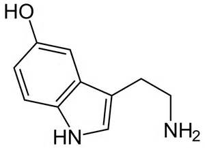 mercura natural dopamine picture 2
