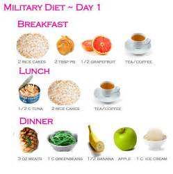 before and after pics of the military diet picture 6