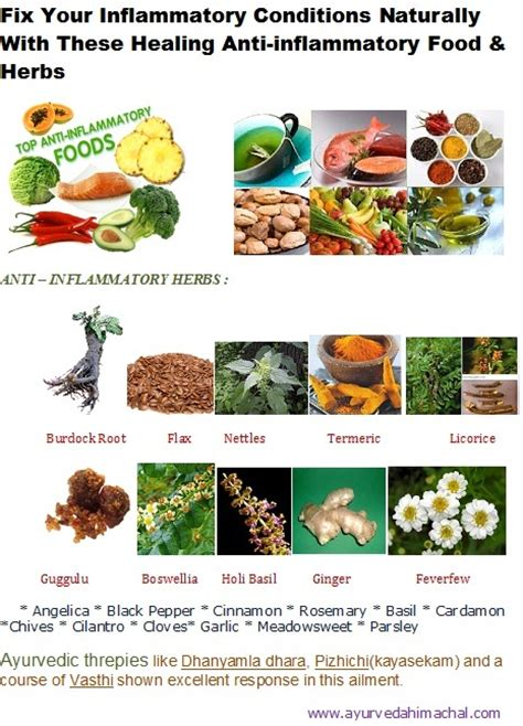 which herbs reduce andrigens picture 11
