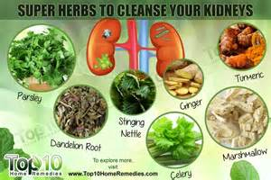 how to cleanse your liver and kidneys picture 2