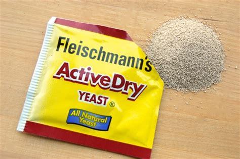 fleishman's yeast picture 6