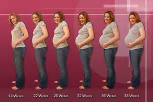 breast growth time lapse pregnancy picture 2