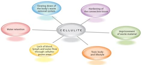 what causes cellulite picture 10