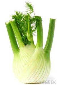 fennel picture 5