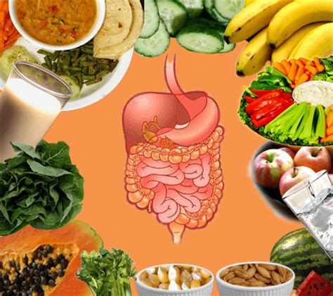 foods for digestion picture 9