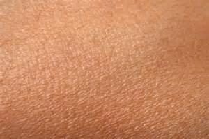 en skin picture 1