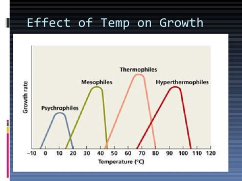 how does tempertature affect microbial growth picture 1
