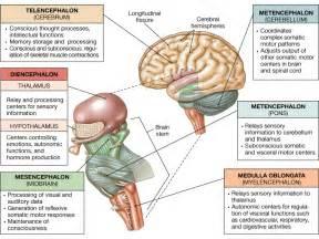health tips hindia language picture 5