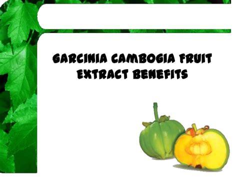 garcinia cambogia fruit extract benefits picture 5