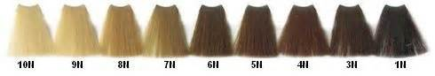 vivatone hair color picture 7