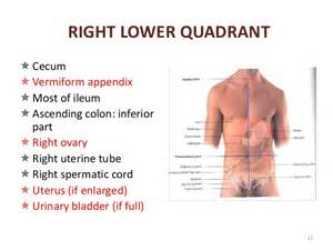 lower right quadrant pain urination bladder picture 1
