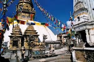thamel bhalu phone number picture 9
